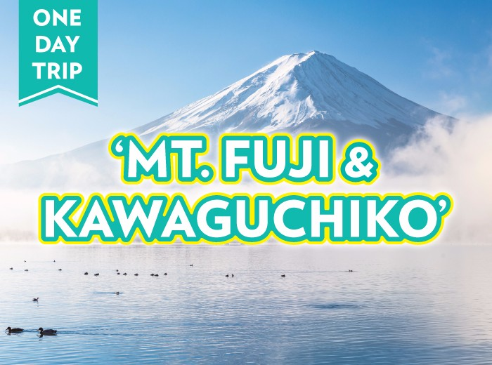 Day Tour Mt Fuji Amp Kawaguchiko World Surprise Travel