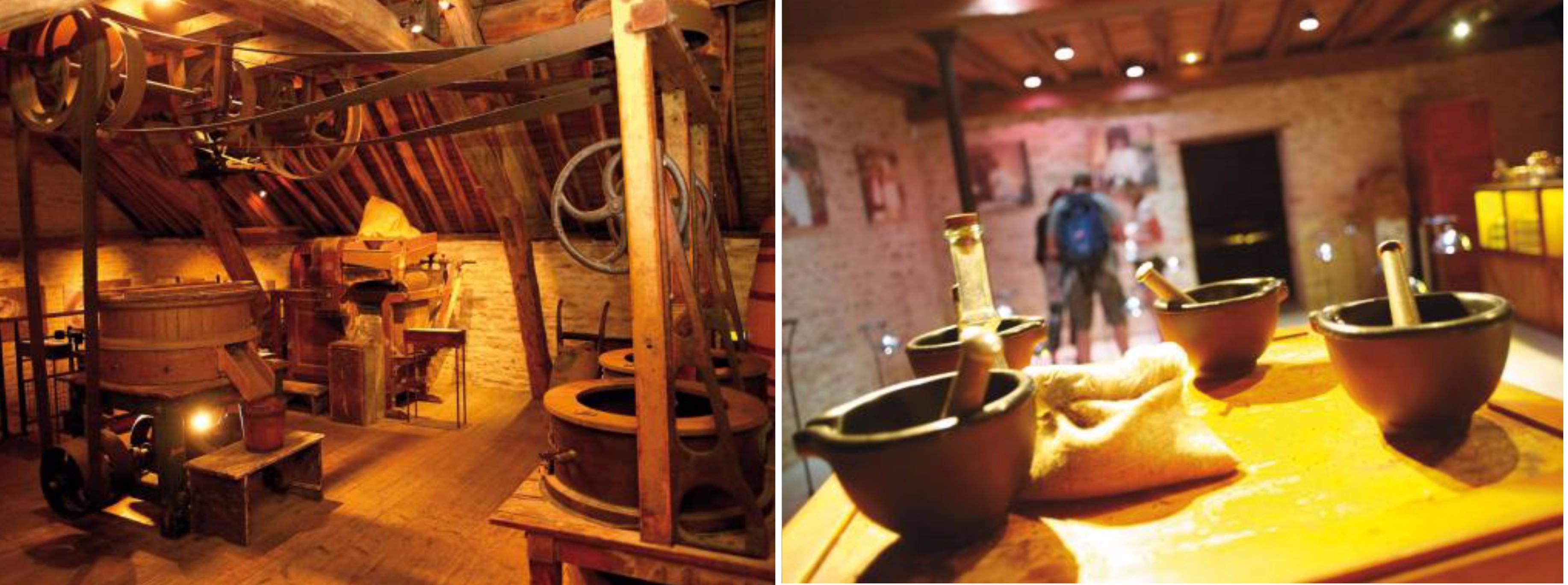 ดิจง – ตลาดเช้า Les Halles – โบน – โอเตล เดอ โบน – พิพิธภัณฑ์มัสตาร์ดฟาลโลต์ –ไวน์ชาโตว์ของปมมาร์ – ชิมไวน์ – ดิจง - 2