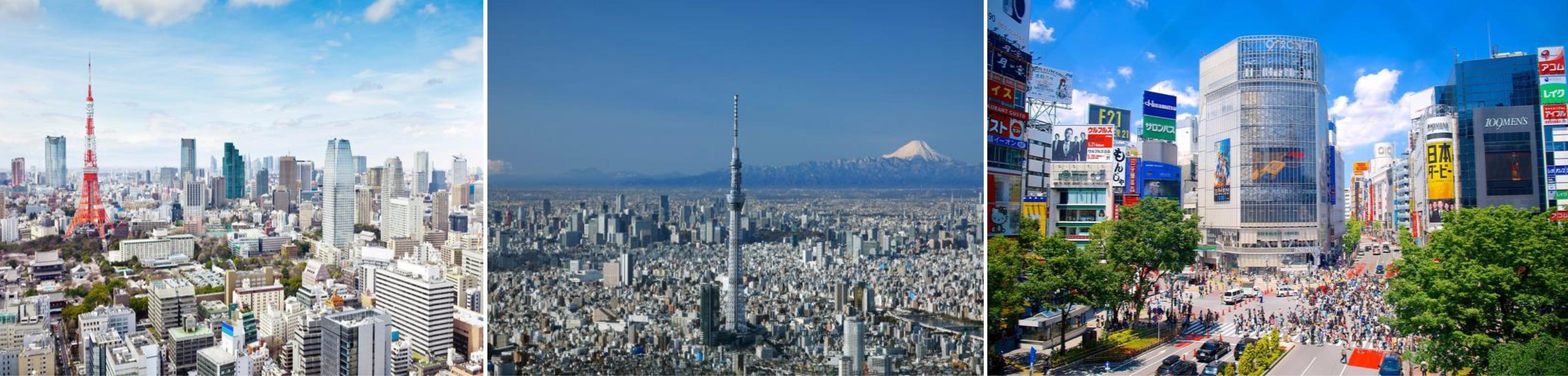 กรุงเทพฯ – นาริตะ – โตเกียว - 2