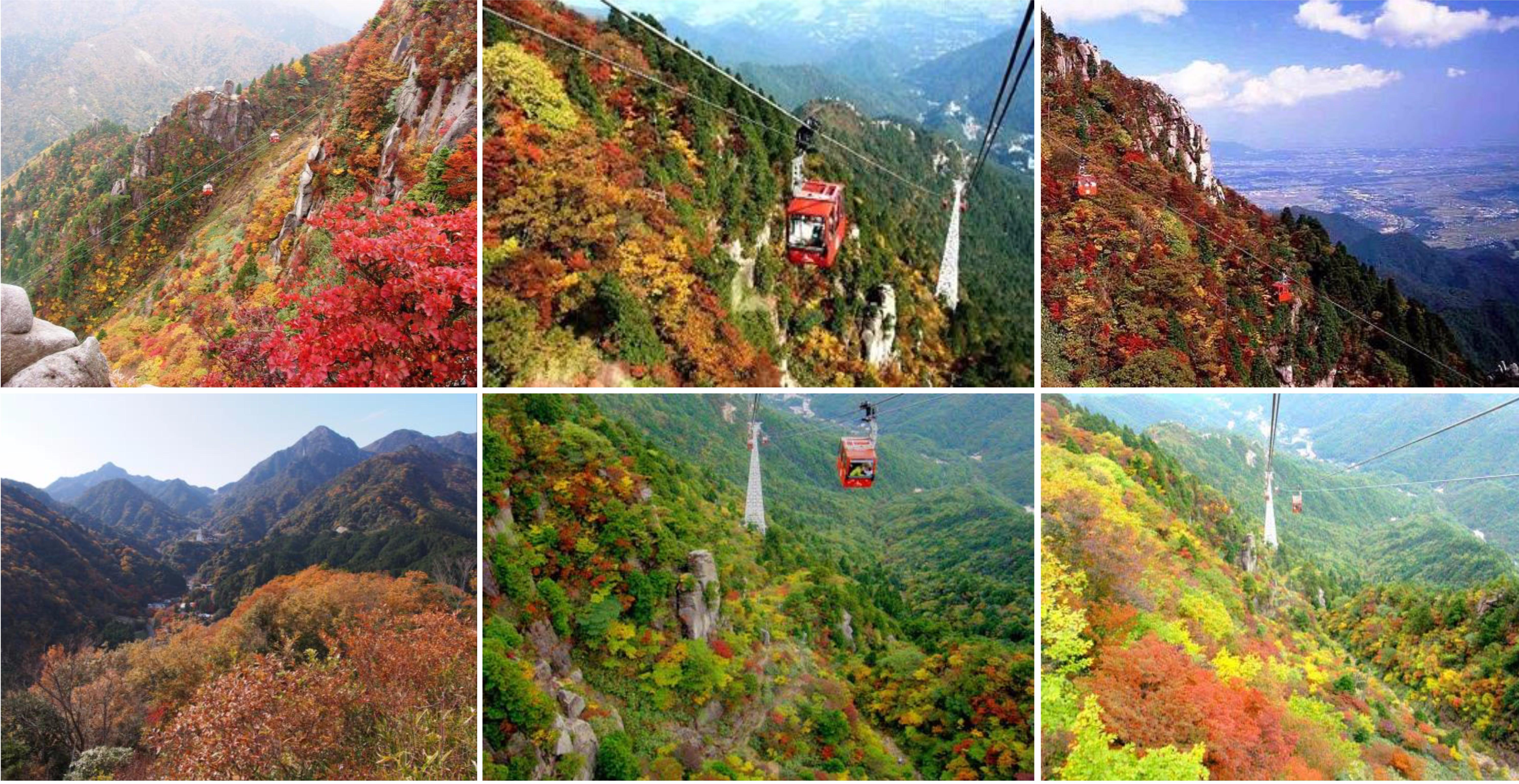 นาโงย่า – หมู่บ้านโอบาระ –  ชิกิซากุระ – รถไฟชินคันเซน – โอซาก้า – ย่านอุเมดะ - 2