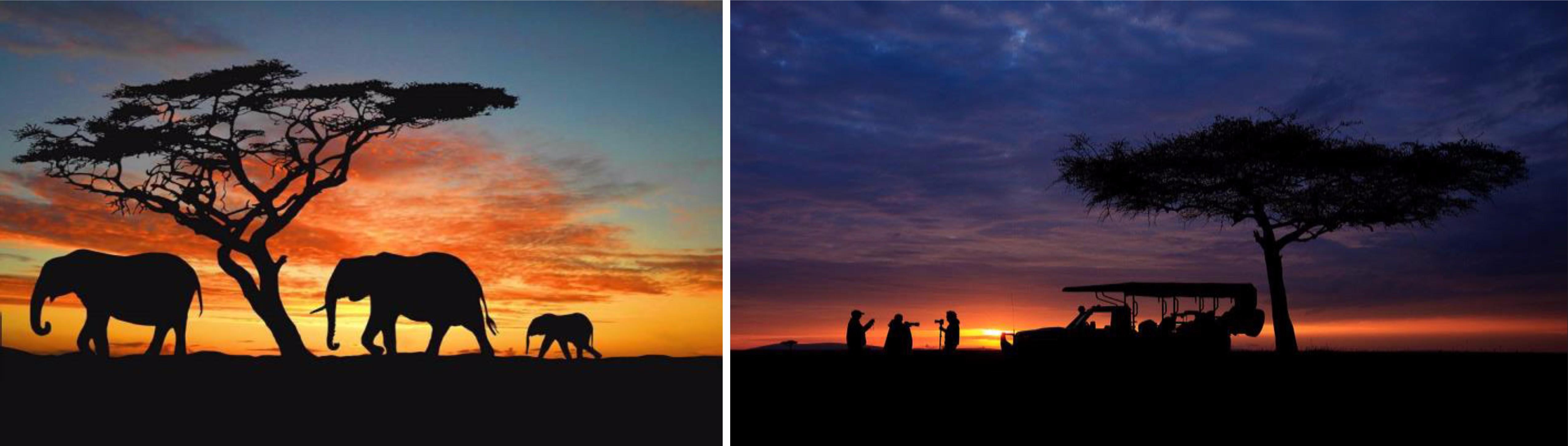 ซันซิตี้ –  Option ขึ้นบอลลูนชมพระอาทิตย์ทอแสงยามเช้า – Early Game Drive อุทยานแห่งชาติ พิลาเนสเบิร์ก – Game drive ตะลุยป่าซาฟารี - 2